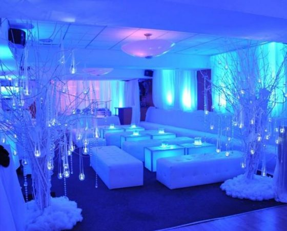Winter Wonderland, 21st Birthday Party, Wirral